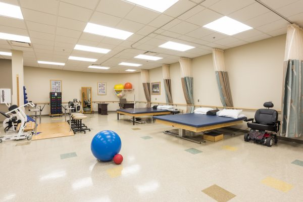 The physical and occupational therapy area